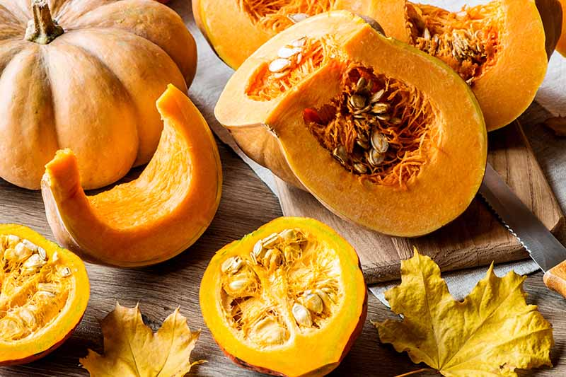 A close up of a variety of different winter squash sliced and set on a wooden surface.