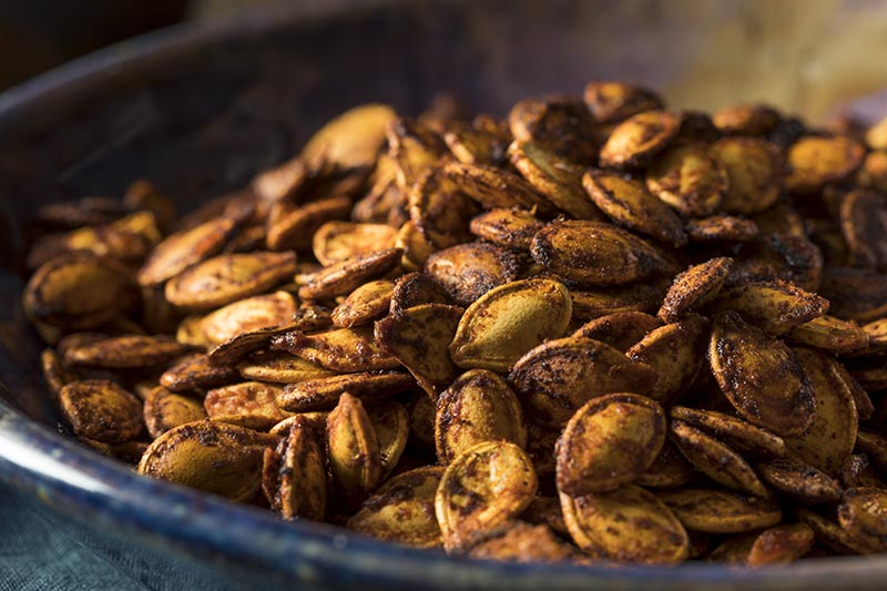 A close up horizontal image of seeds roasted in cumin and paprika, in a blue ceramic bowl.
