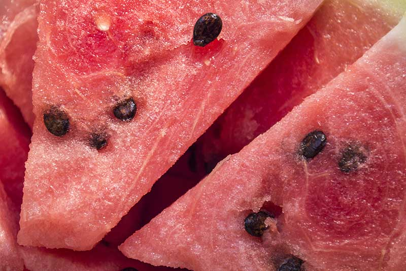 A close up of the red flesh of freshly sliced watermelon, with dark seeds visible.