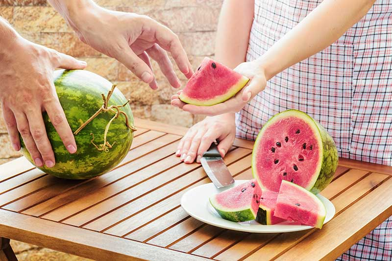 A horizontal close up picture of two people holding and slicing watermelons on a wooden table, with a stone wall in the background.