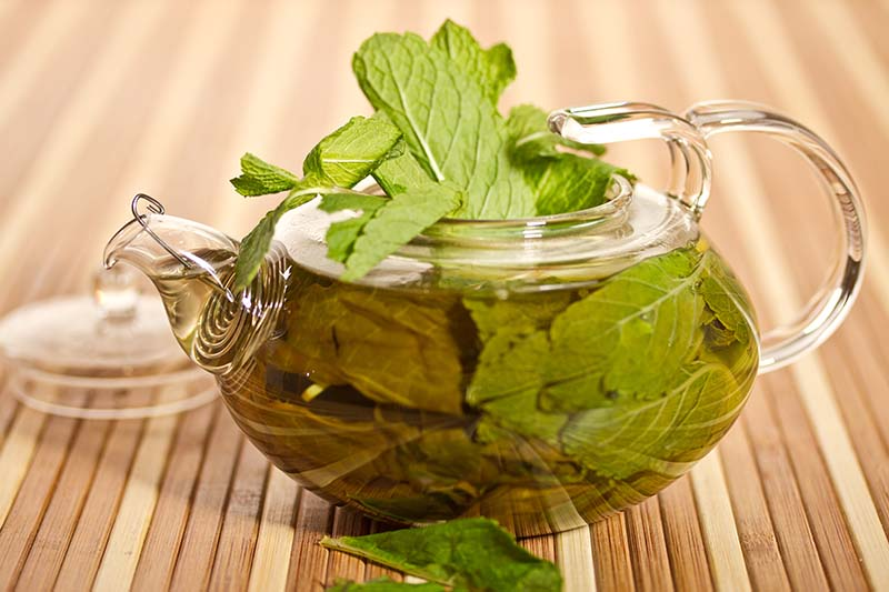 A small glass teapot containing fresh peppermint leaves steeping in hot water set on a wooden surface.