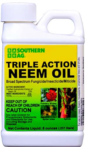 A close up of the packaging of Southern Ag Triple Action Neem Oil on a white background.