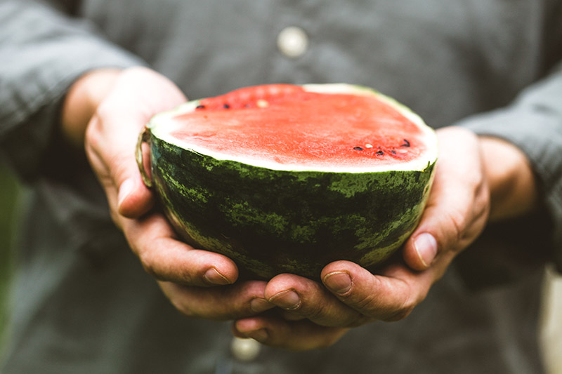 A close up of two hands holding half a watermelon, with mottled green skin and bright red flesh.