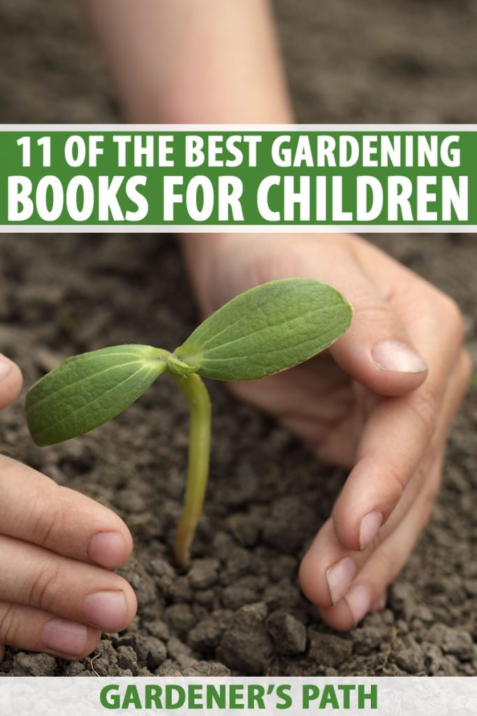 A close up vertical image of a young child's hands planting a seedling into dark rich soil in the garden. To the top and bottom of the frame is green and white printed text.