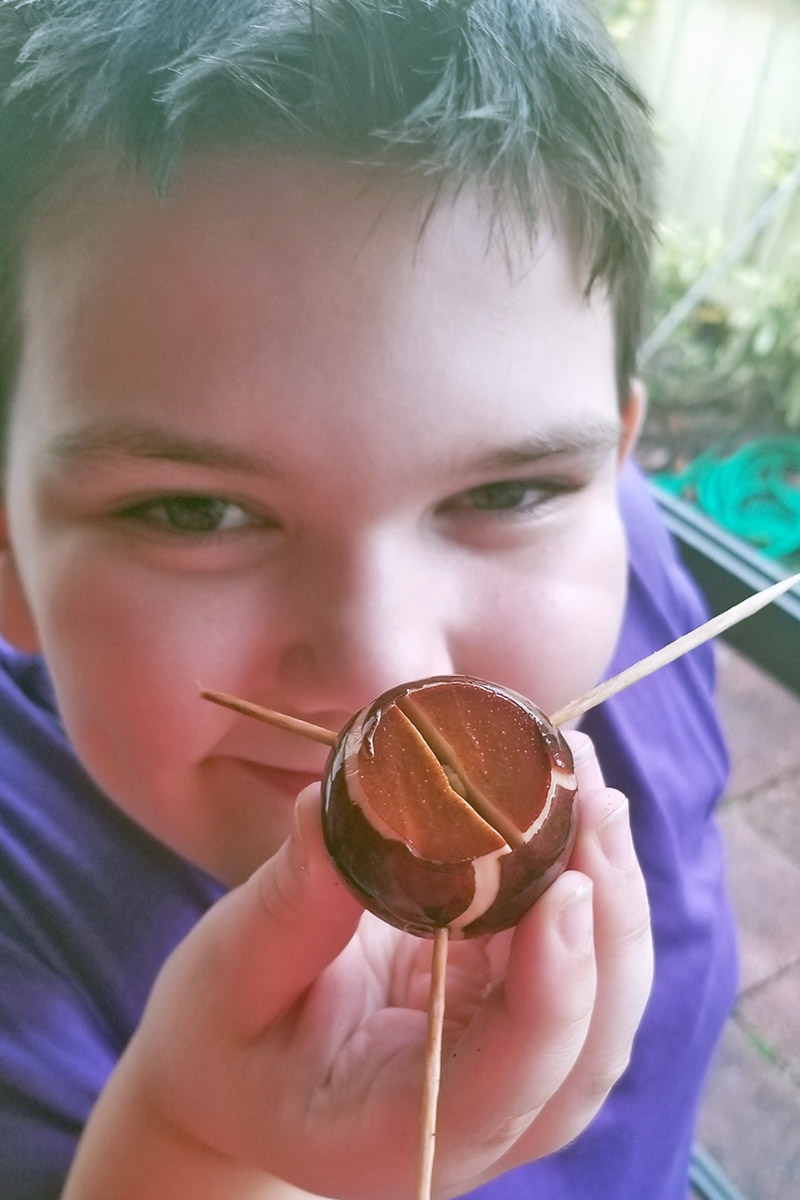 A close up vertical image of a boy holding an avocado seed that has been cut and toothpicks placed in the side, ready for sprouting.