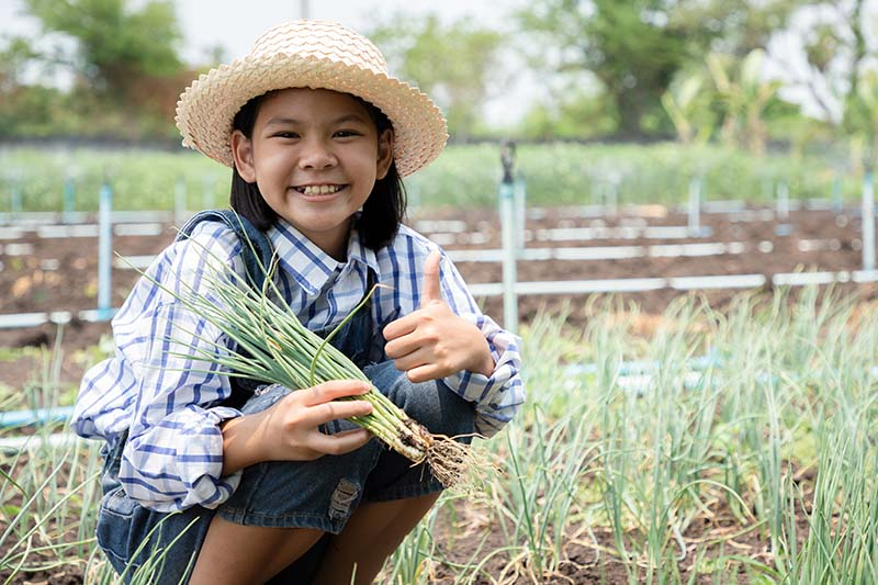 A close up horizontal image of a child in a field of onions giving a thumbs up sign, with a garden scene in soft focus in the background.