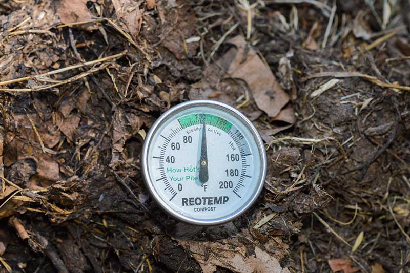 A close up horizontal image of a thermometer in a home compost pile monitoring the temperature.