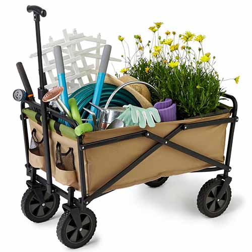 A close up horizontal image of a folding gardening wagon filled with tools and plants on a white background.