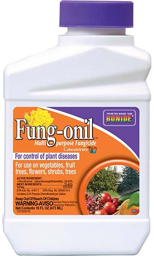 A close up of the packaging of Bonide Fung-onil multi-purpose fungicide on a white background.