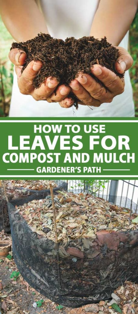 A collage of photos showing fallen autumn tree leaves being turned into mulch and compost.