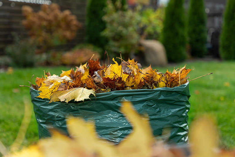 A close up horizontal image of a green plastic garden sack filled with freshly collected autumn leaves, with a garden scene in soft focus in the background.