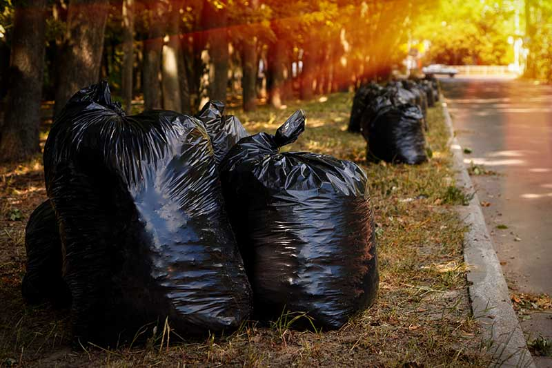 A horizontal image of a street with black plastic bags filled with autumn leaves pictured in light filtered sunshine.