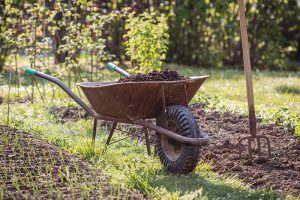 Composting Autumn Leaves: How to Use Leaves for Compost and Mulch