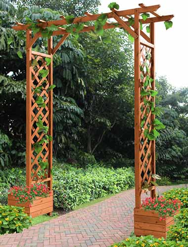 A close up vertical picture of a large wooden Sunjoy arbor in the garden with planters at the base of either side and a paved pathway underneath it.