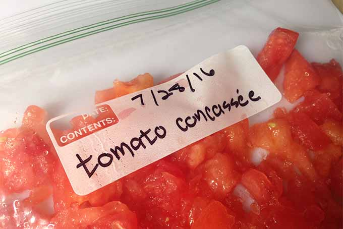 A close up horizontal image of a small plastic bag containing tomato concasse, labelled, and ready to freeze.