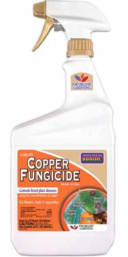 A close up vertical image of a spray bottle of Bonide Copper Fungicide to treat Anthracnose on plants.