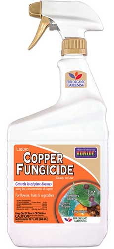 A close up vertical image of the packaging of a plastic spray bottle containing copper fungicide for treating plants, on a white background.