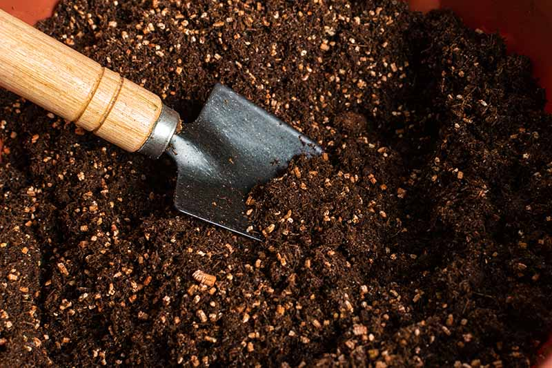 A close up horizontal image of a small garden trowel on the left of the frame digging fresh, rich potting soil.