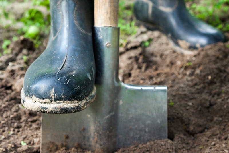 A close up horizontal image of a booted foot on a shovel digging the soil.