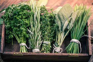 5 of the Best Ways to Freeze Fresh Herbs