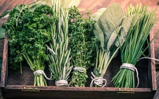 A close up horizontal image of a wooden tray with freshly harvested parsley, rosemary, thyme, sage, and chives, all tied in individual bunches with string and set on a wooden surface.