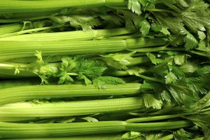 When and How to Harvest Celery