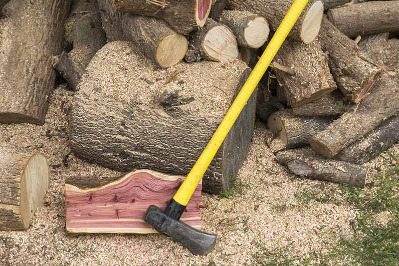 A close up horizontal image of a splitting maul with a long yellow handle set on the ground with a pile of chopped wood in the background.