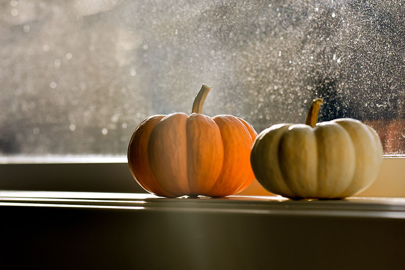 A close up horizontal image of two small pumpkins set on a windowsill with snow visible outside, pictured in gentle evening light.
