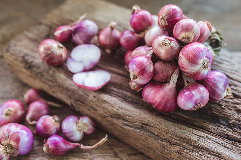 A close up horizontal image of a pile of red shallots set on a rustic wooden surface.
