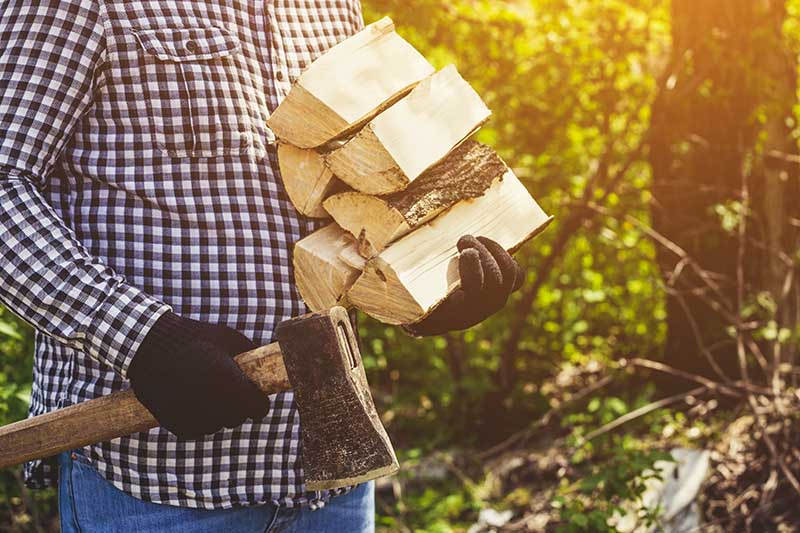 A close up horizontal image of a man walking in the garden holding a splitting maul in one hand and a pile of logs in the other, pictured in light sunshine on a soft focus background.