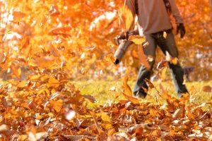Blowin' in the Manmade Wind: 9 of the Best Leaf Blowers