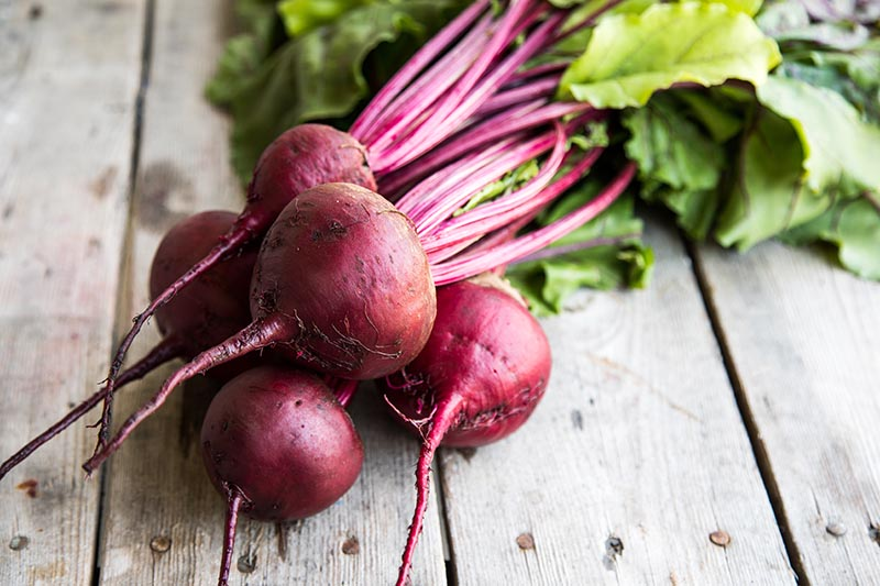 A close up horizontal image of freshly harvested deep red beetroots with the tops and roots still attached and set on a rustic wooden surface.