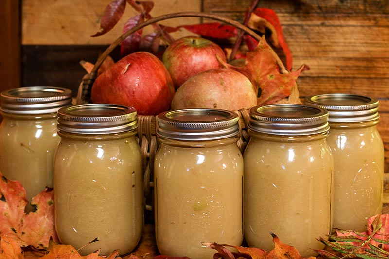 A close up horizontal image of jars containing freshly homemade apple sauce with autumn leaves scattered round and a wicker basket with fruit in the background.