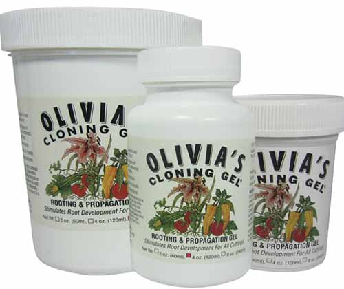 A close up square image of the packaging for Olivia's Cloning Gel pictured on a white background.