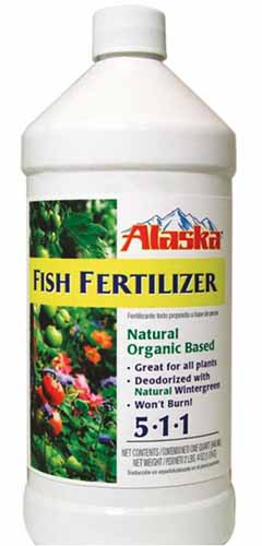 A close up vertical image of a white plastic bottle of Alaska Fish Fertilizer pictured on a white background.