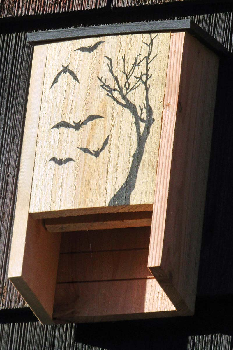A close up vertical image of a wooden bat house installed on the side of a dark-colored wooden home.