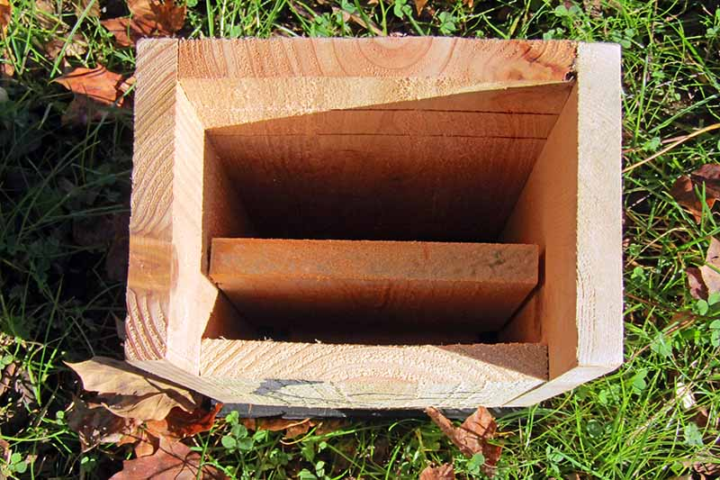 A close up horizontal image showing the interior of a bat house set on the lawn, pictured in bright sunshine.