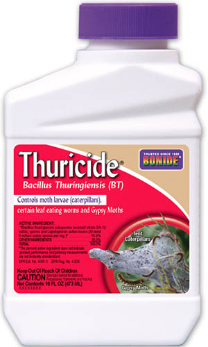 A close up vertical image of a container of Bonide Thuricide for use in the garden pictured on a white background.
