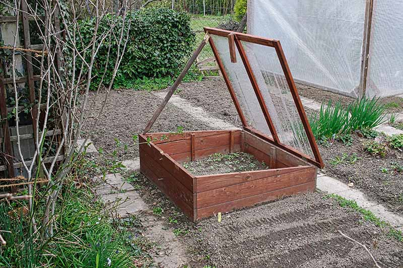 A horizontal image of a wooden cold frame set up in the garden to protect crops from cold weather.