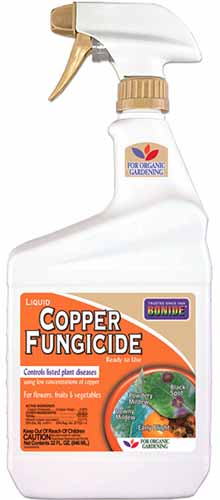 A close up vertical image of a spray bottle of Bonide Copper Fungicide spray pictured on a white background.