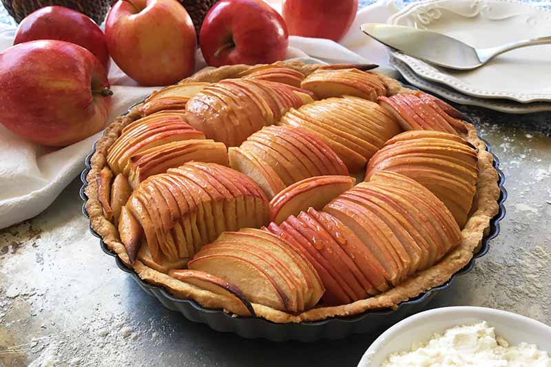 A close up horizontal image of a freshly baked apple tart set on a floured surface with fresh apples in the background.
