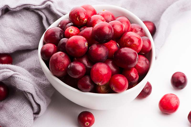 A close up horizontal image of a white bowl filled with bright red berries set on a white surface with a light gray fabric in the background.