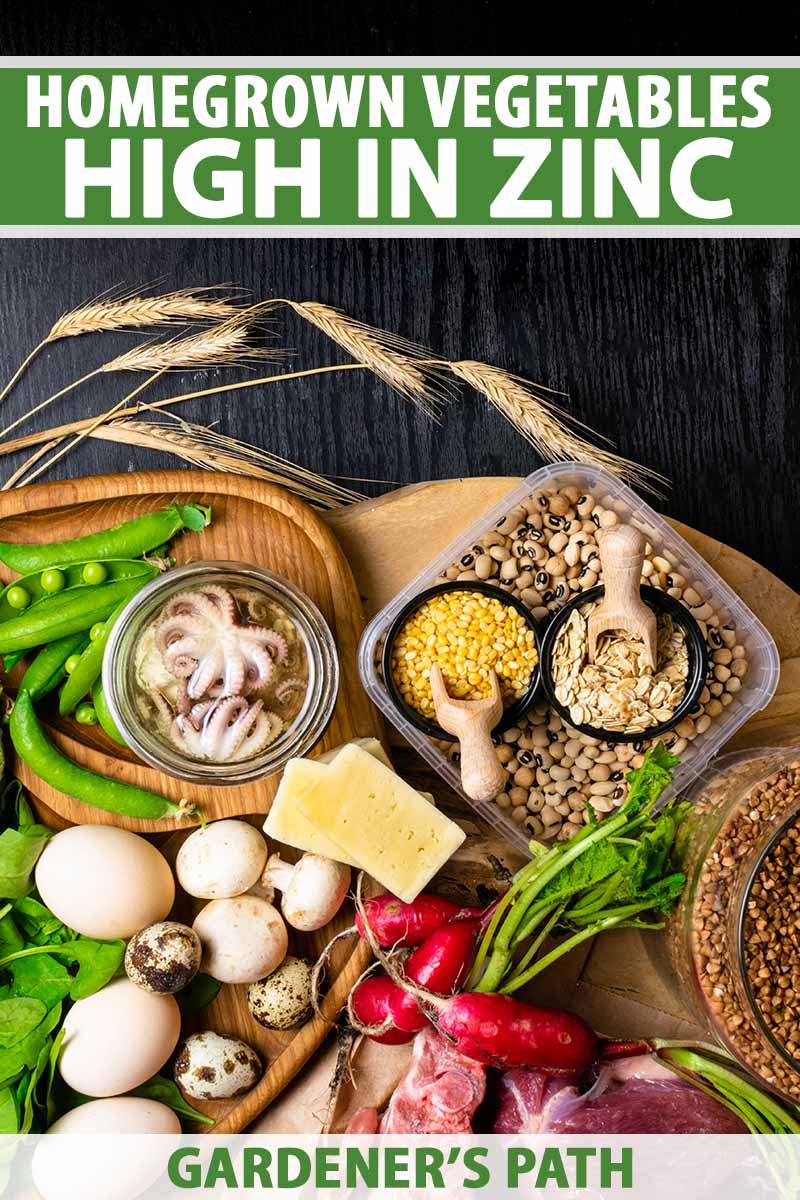 A vertical image of a variety of different foods: legumes, vegetables, mushrooms, and seafood set on a wooden chopping board on a dark wooden background. To the top and bottom of the frame is green and white printed text.