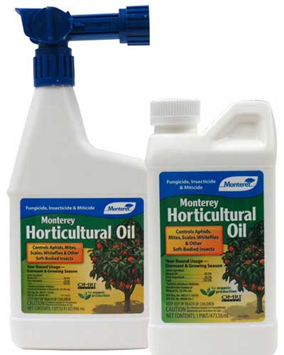 A close up square image of the packaging of Monterey Horticultural oil pictured on a white background.