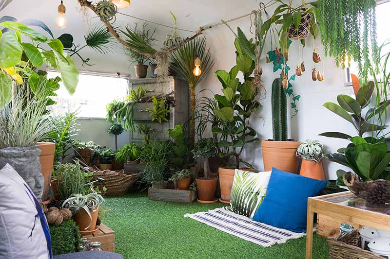 A horizontal image of an indoor space decorated with a large variety of houseplants, with cushions and mats on the artificial grass on the floor.