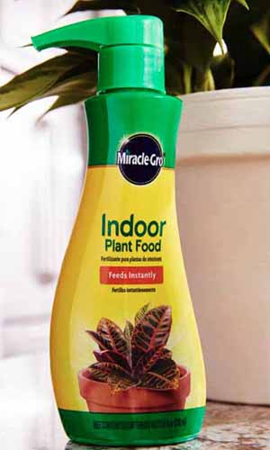 A close up vertical picture of a bottle of MiracleGro Indoor Plant Food set on a kitchen counter with a houseplant in a white pot in the background.