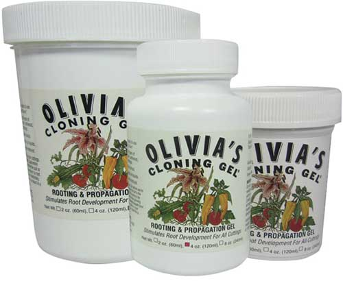 A close up square image of three pots of Olivia's Cloning Gel on a white background.