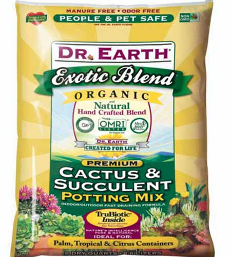 A close up of the packaging of Dr. Earth Organic Cactus and Succulent Mix pictured on a white background.