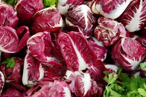 How to Grow Radicchio in the Garden