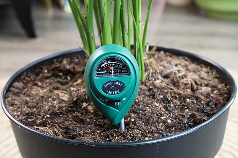 A close up horizontal image of a black plant pot with a sensor placed into the soil to test the condition of the soil, pictured on a soft focus background.